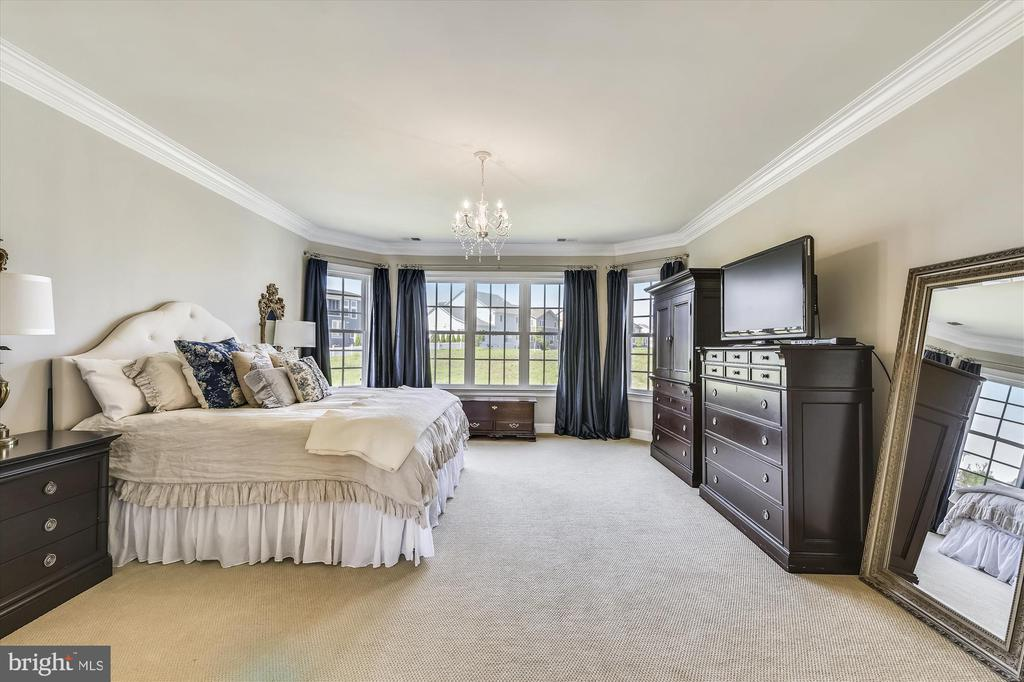 Huge Master Bedroom with Lots of Light - 41669 APPLEYARD PL, ASHBURN