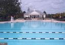 One of Several Community Pools - 41669 APPLEYARD PL, ASHBURN