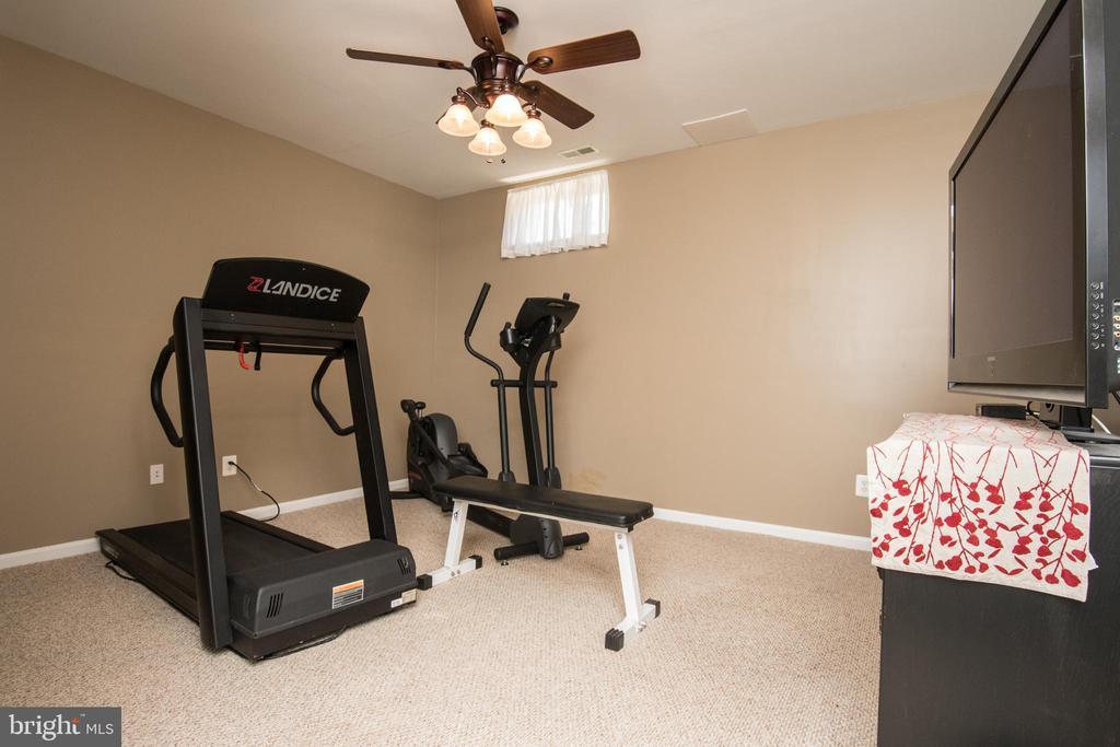 Exercise room - 23084 RED ADMIRAL PL, BRAMBLETON