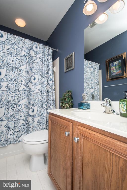 Full bathroom in the basement - 23084 RED ADMIRAL PL, BRAMBLETON