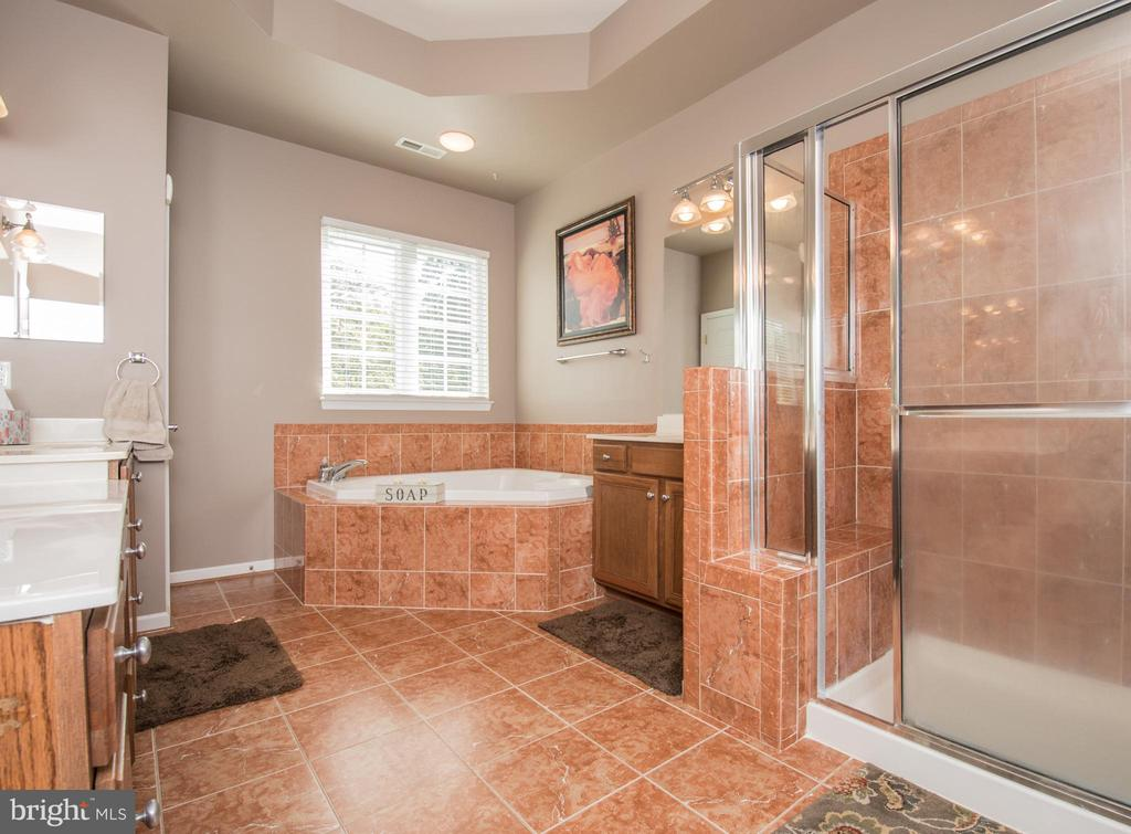 Stand-in shower and soaking tub. - 23084 RED ADMIRAL PL, BRAMBLETON