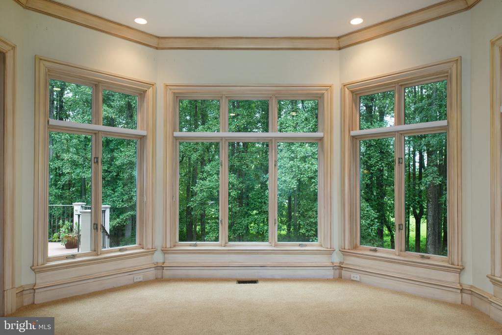 Bay window in study/solarium - 9998 BLACKBERRY LN, GREAT FALLS