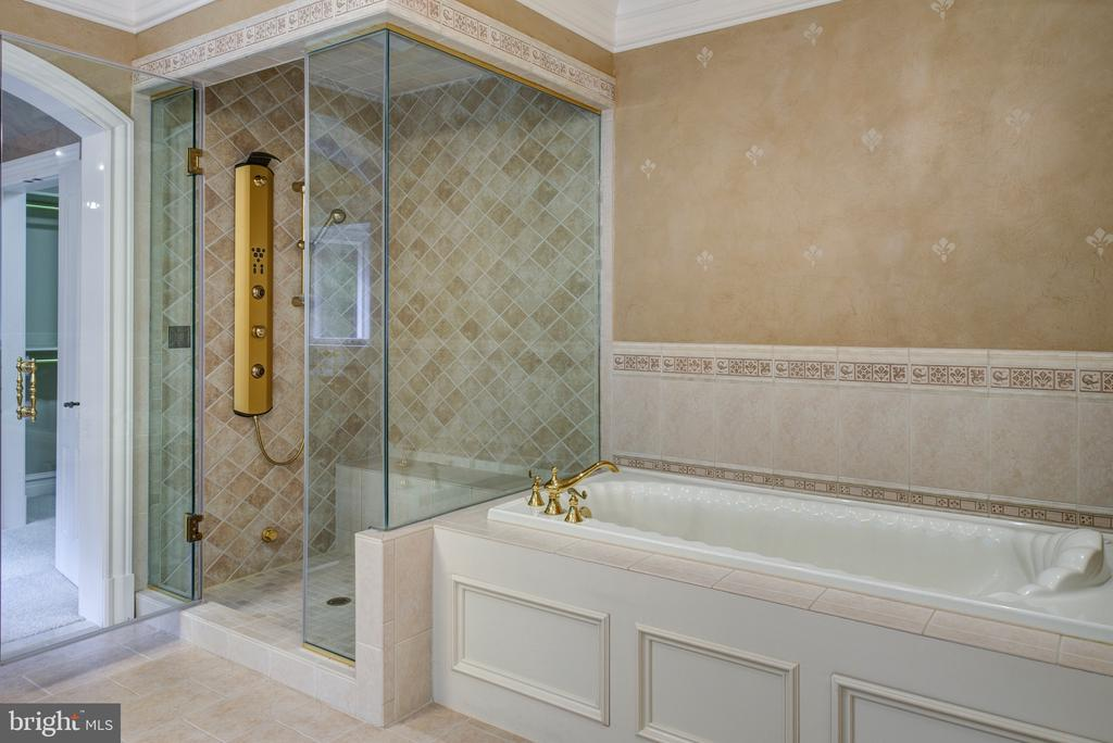 Master bath with body shower & soaking tub - 9998 BLACKBERRY LN, GREAT FALLS