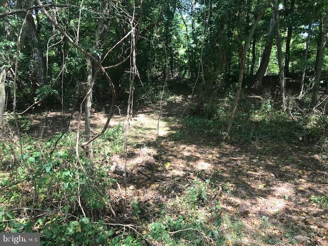 Land for Sale at Port Royal, Pennsylvania 17082 United States