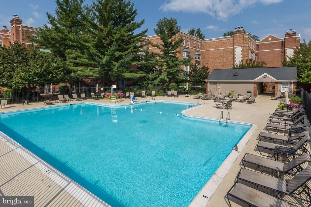 Pool - 3802 PORTER ST NW #301, WASHINGTON