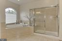 Luxury Owners Bath: Soaking Tub + Private H2O clst - 22478 PINE TOP CT, ASHBURN