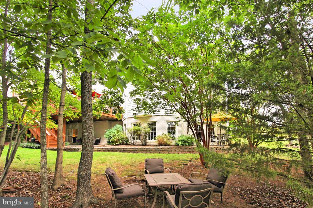 Wooded Section of the Lot - 22478 PINE TOP CT, ASHBURN