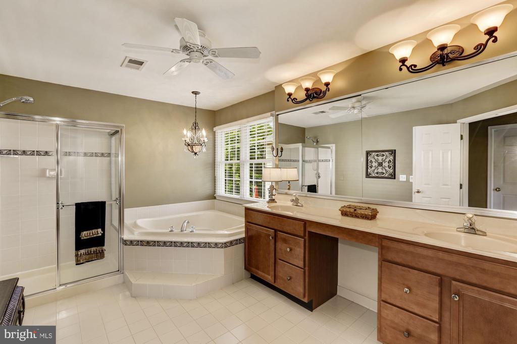 Luxurious Master Bath - 20113 BLACKWOLF RUN PL, ASHBURN