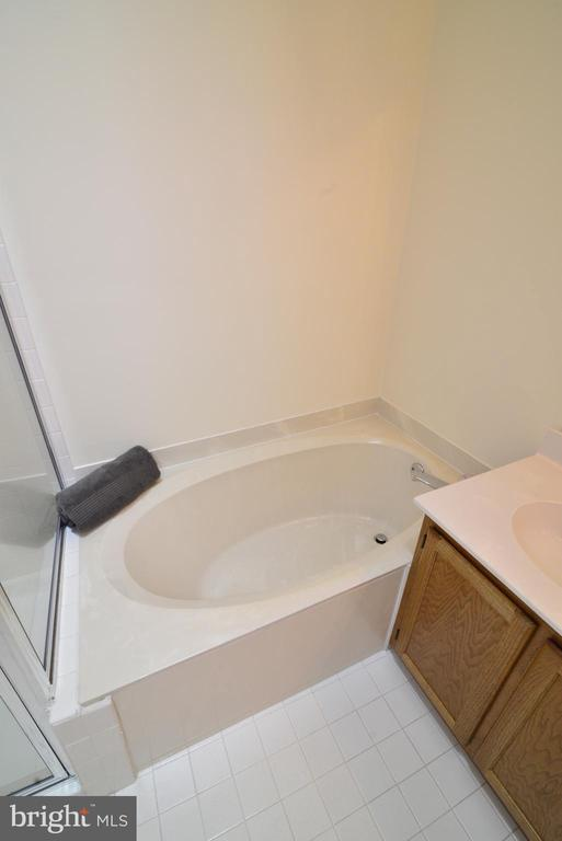 Master bath separate  soaking tub - 43854 LABURNUM SQ, ASHBURN