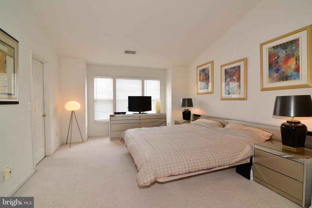 Master Bedroom - HUGE with cathedral ceilings - 43937 FELICITY PL, ASHBURN