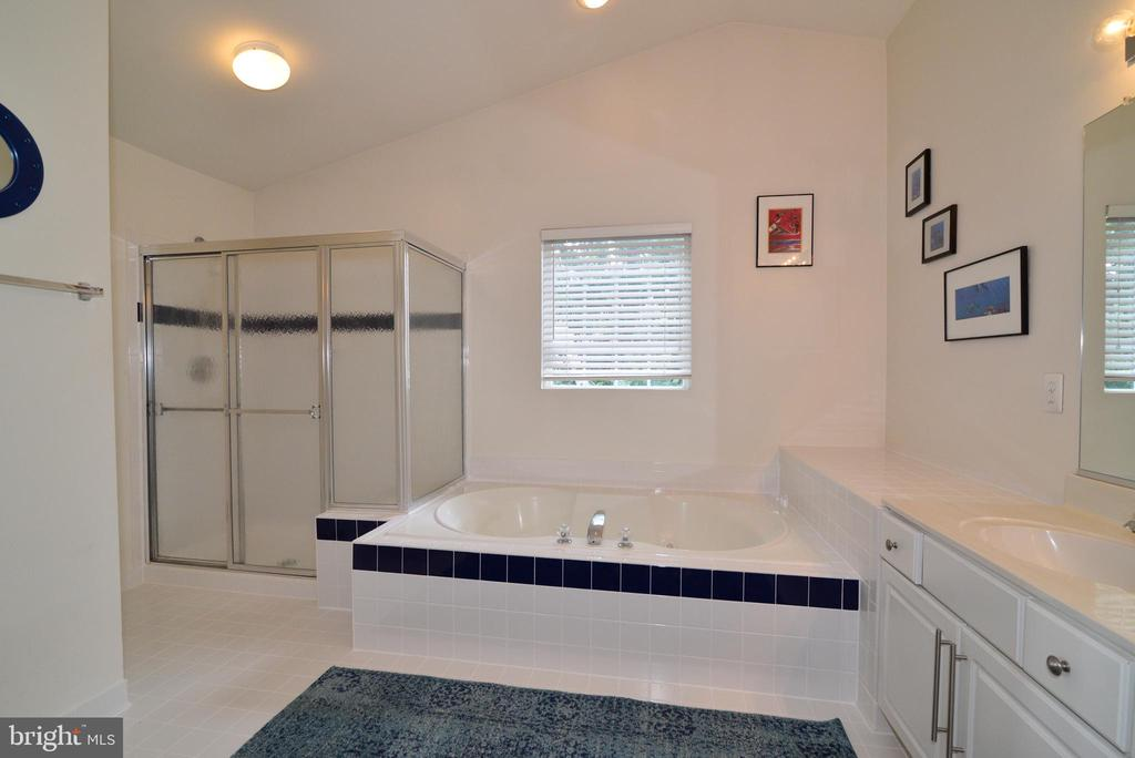 Oversized shower, double sinks and soaking tub - 43937 FELICITY PL, ASHBURN