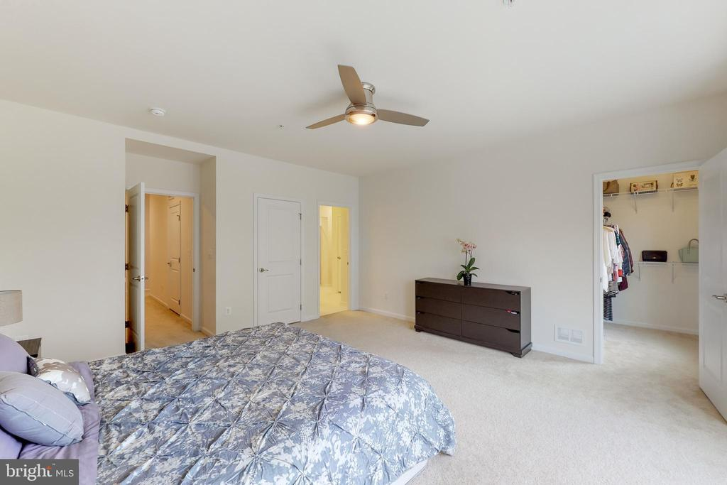 Master bedroom - good size - 42231 PIEBALD SQ, ALDIE