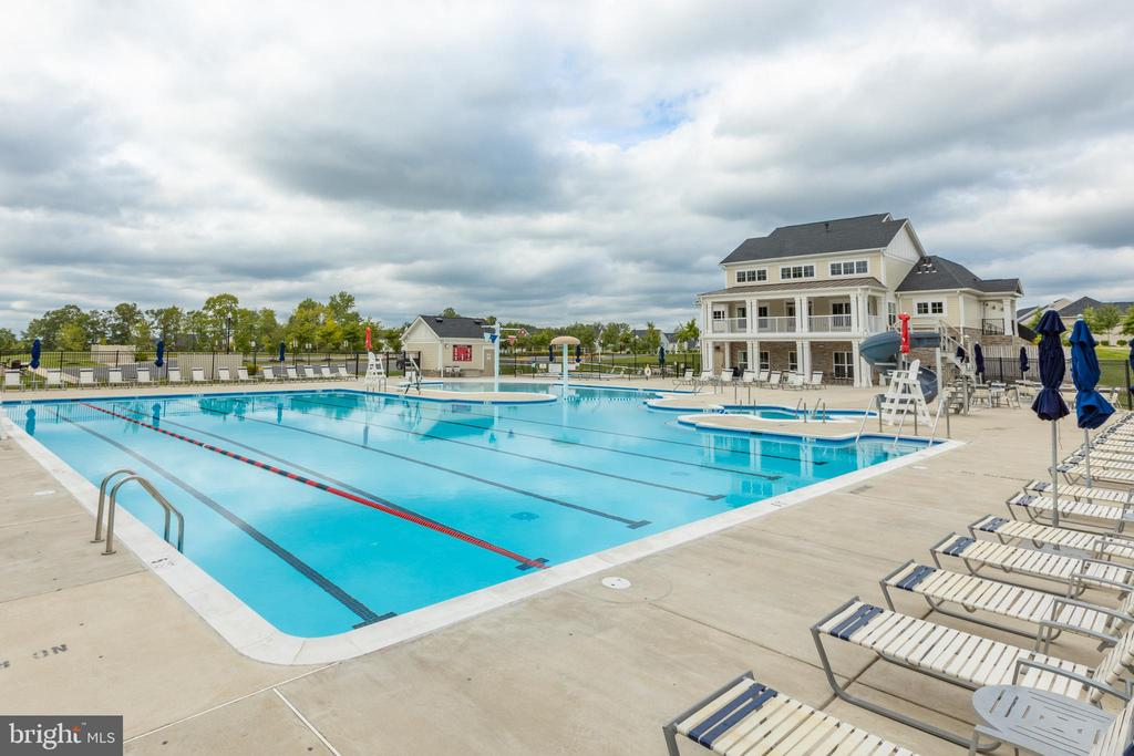Olympic size pool with exercise lanes - 42231 PIEBALD SQ, ALDIE