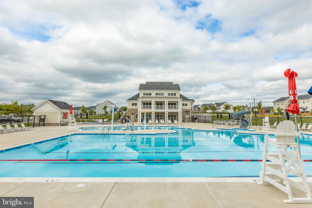 Olympic size pool with slide - 42231 PIEBALD SQ, ALDIE