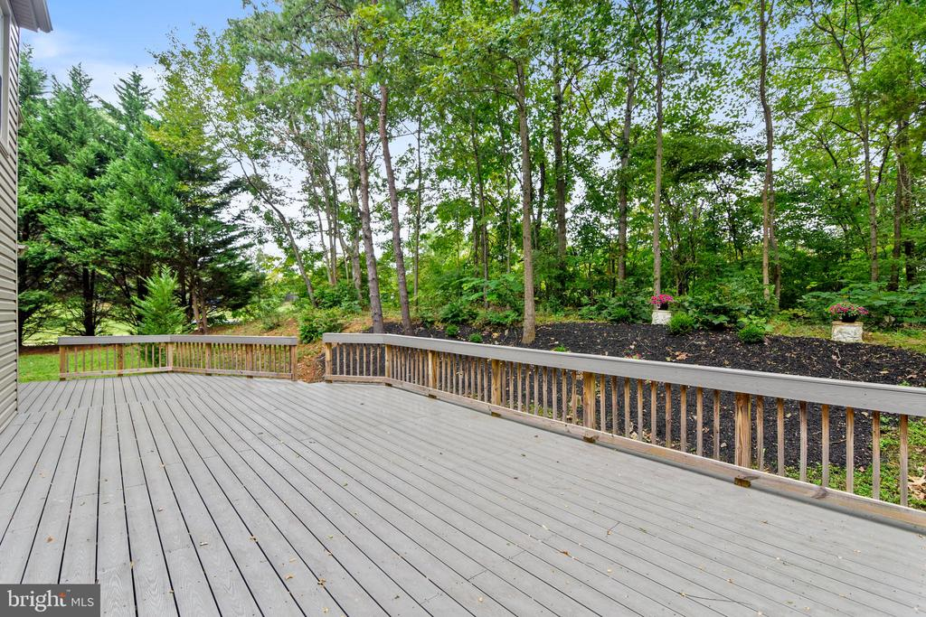 Mature trees surrounding deck - 12001 SUGARLAND VALLEY DR, HERNDON