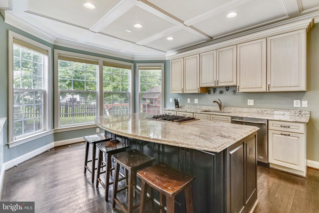 Kitchen with custom cabinetry and granite - 22077 HIGHVIEW TRAIL PL, BROADLANDS