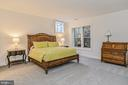 Lower level 4th bedroom. - 23059 WELBOURNE WALK CT, ASHBURN