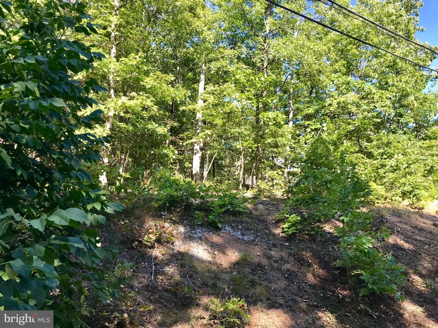Additional photo for property listing at  Cross Junction, Virginia 22625 Förenta staterna