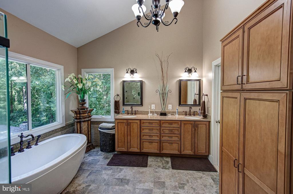 Owner's Bath - 1428 CROWELL RD, VIENNA