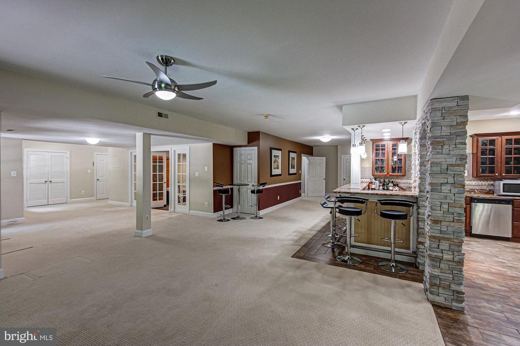 Lower Level Rec Room - 1428 CROWELL RD, VIENNA