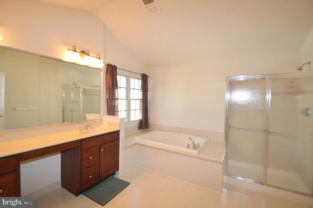 Master Bath - 42342 EQUALITY ST, CHANTILLY