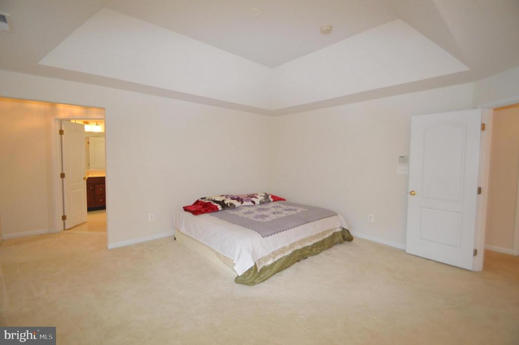Master Bedroom - 42342 EQUALITY ST, CHANTILLY