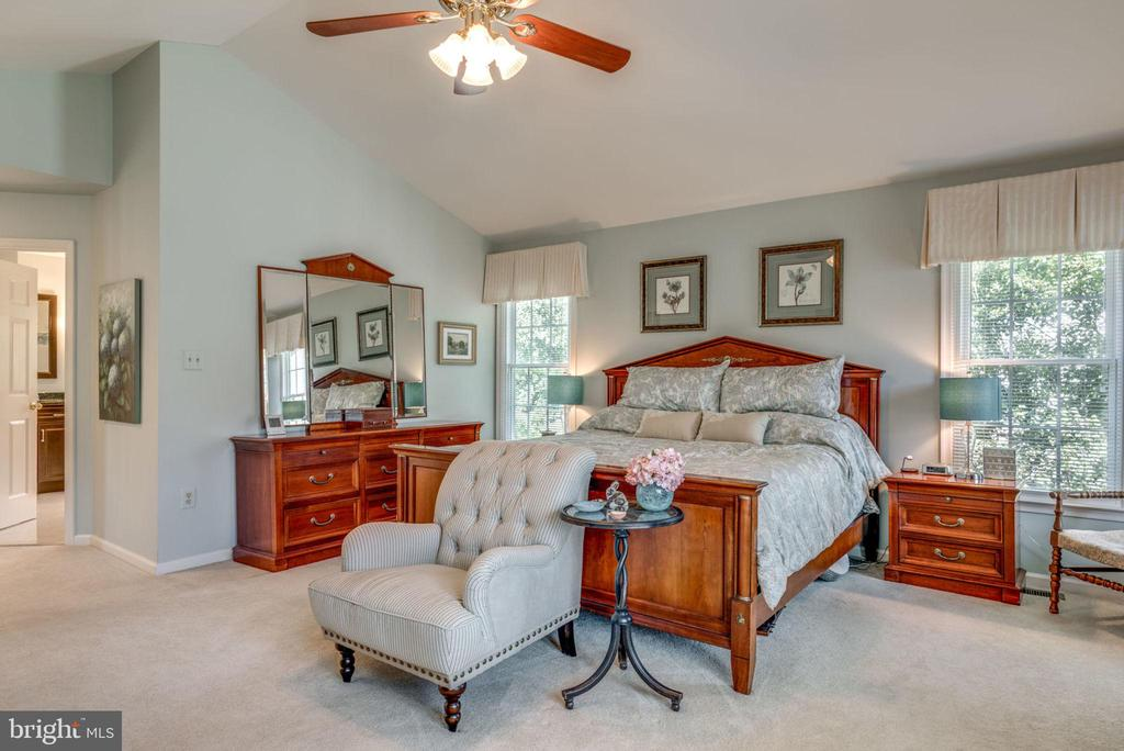 Spacious Master Bedroom! - 20650 SETTLERS POINT PL, STERLING