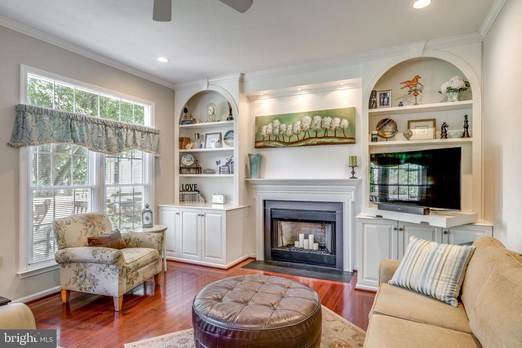Family Rm with fireplace & built-ins! - 20650 SETTLERS POINT PL, STERLING