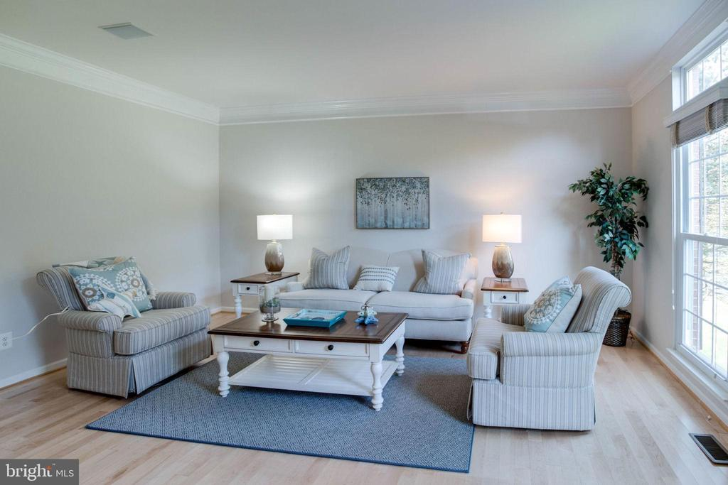 Formal Living Room - 13909 BALMORAL TER, CLIFTON