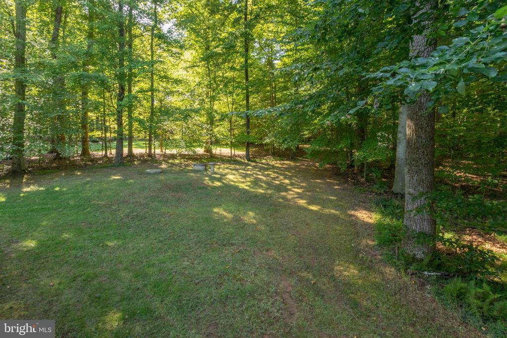 Over 1.3 private acres! - 13909 BALMORAL TER, CLIFTON
