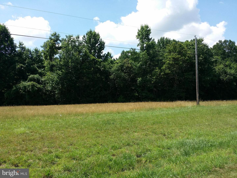 土地,用地 为 销售 在 Lincoln, 特拉华州 19960 美国