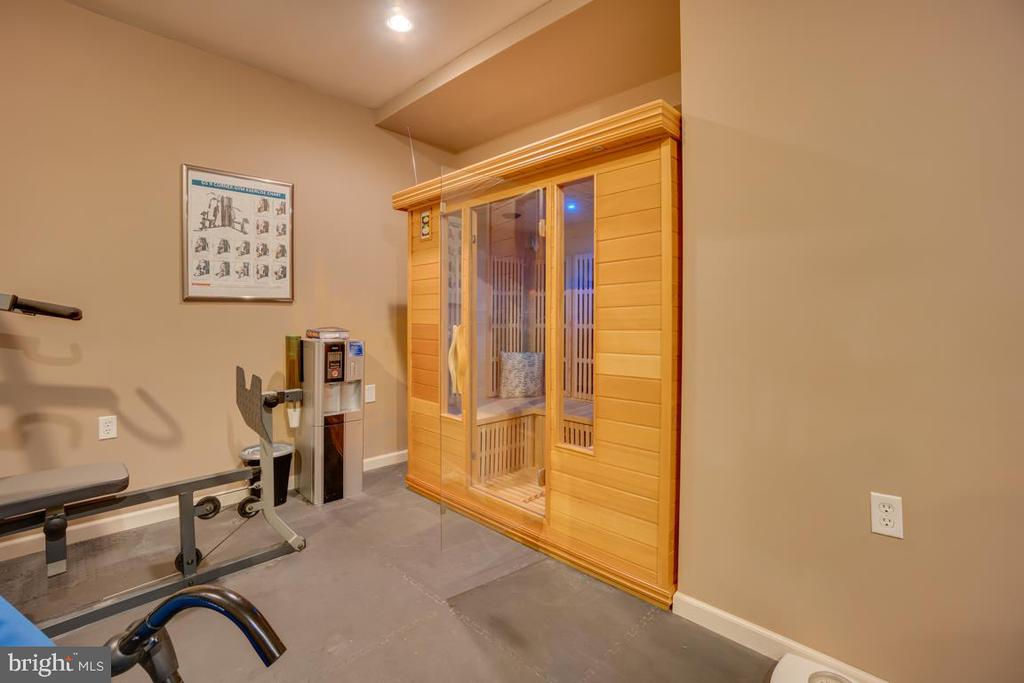 sauna can convey, has light therapy - 132 CHRISWOOD LN, STAFFORD