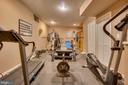 Gym equipment can convey - 132 CHRISWOOD LN, STAFFORD