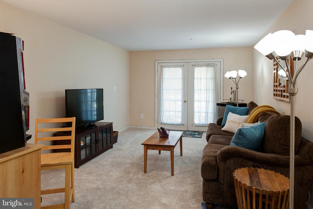 LARGE REC ROOM HAS 2 FRENCH DOORS LEADING TO FRT - 43341 GREYSWALLOW TER, ASHBURN