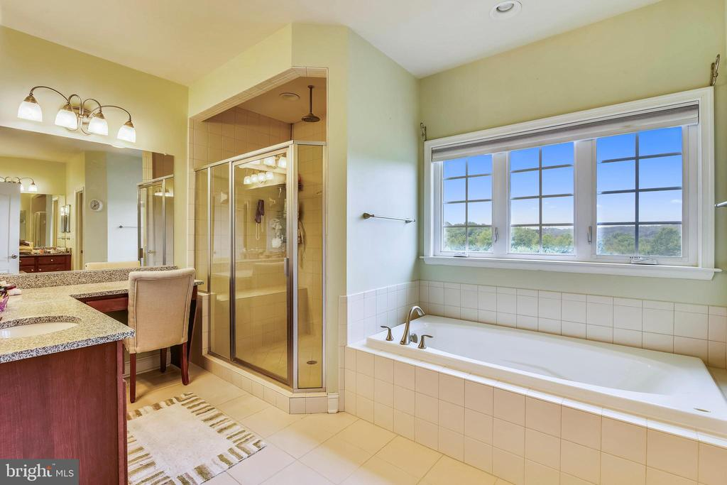 Master Bathroom - 20173 GLEEDSVILLE RD, LEESBURG
