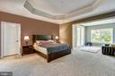 Master suite with tray ceiling and accent wall - 41984 PADDOCK GATE PL, ASHBURN