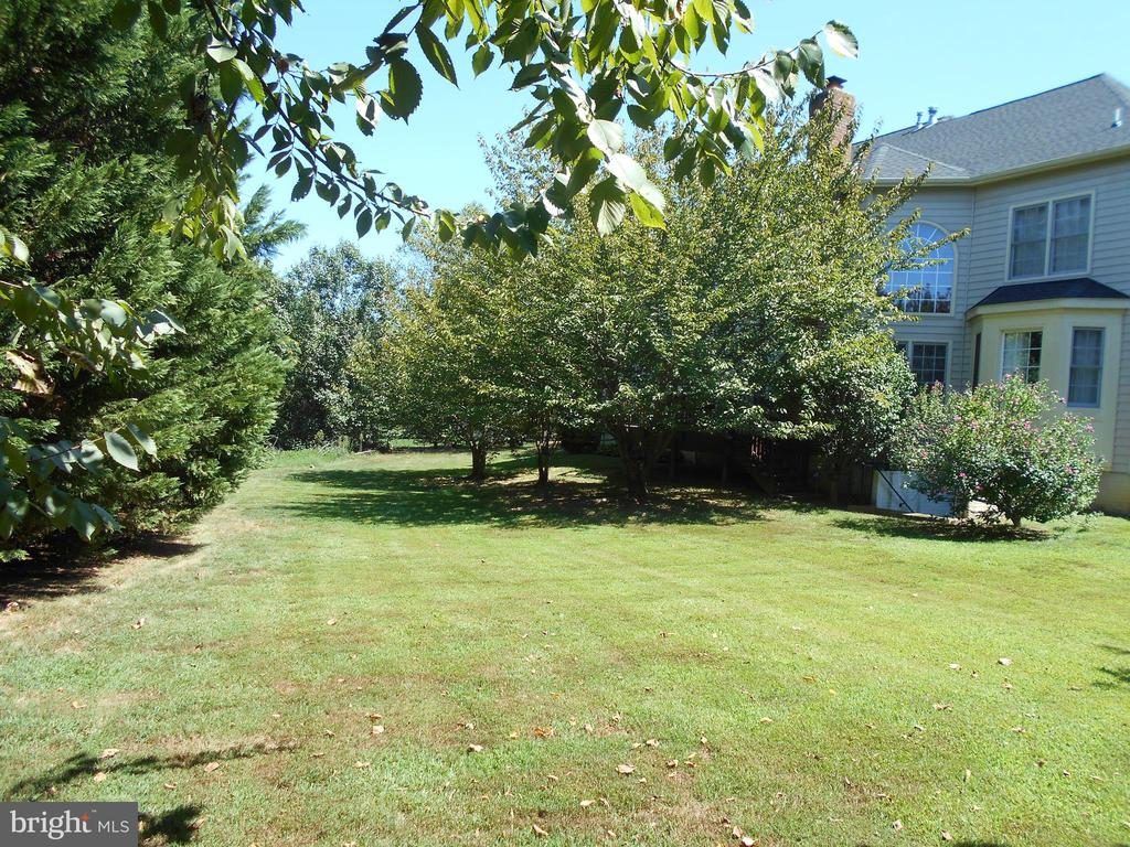 REAR OF HOME  ENCLOSED BY TREES - 8900 GRIST MILL WOODS CT, ALEXANDRIA