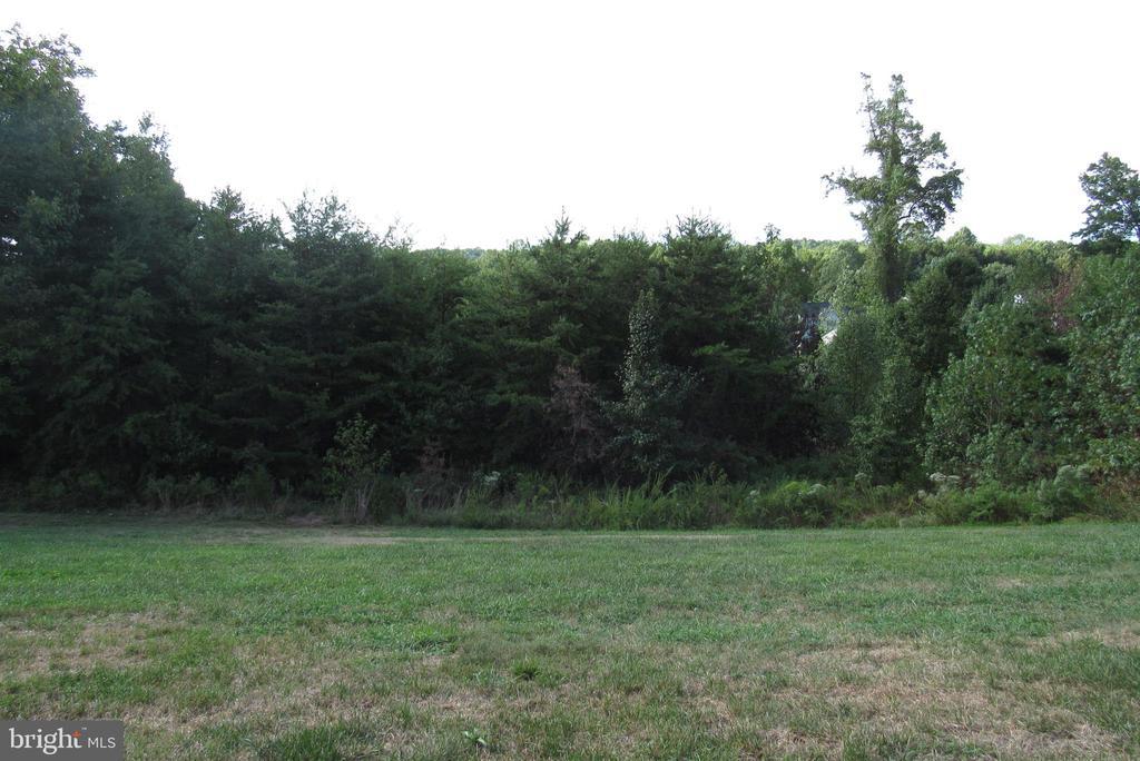 Rear View - 2763 MYRTLEWOOD DR, DUMFRIES