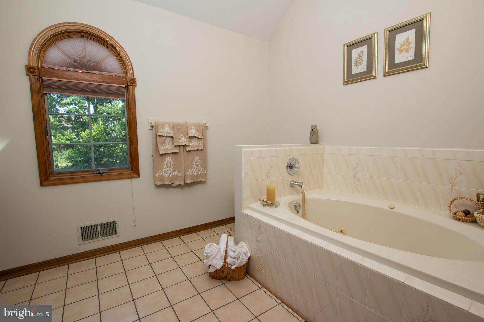 Lg Master Bath w/ Soaking Tub & Separate Shower