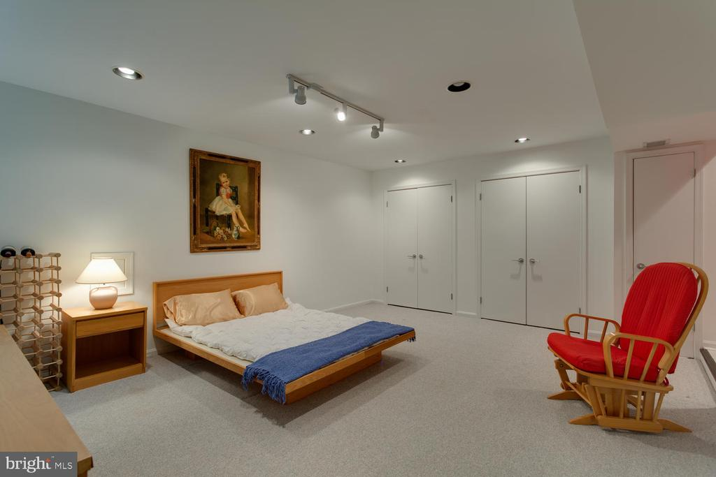 Basement Bonus Room - 8518 OLD DOMINION DR, MCLEAN