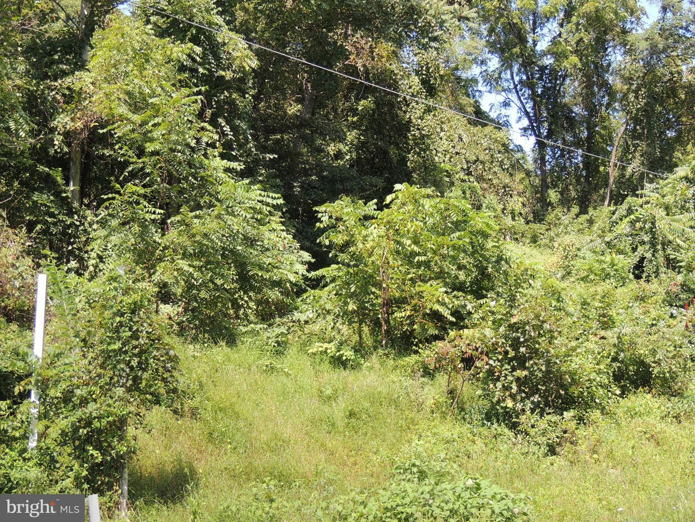 Land for Sale at Emmitsburg, Maryland 21727 United States