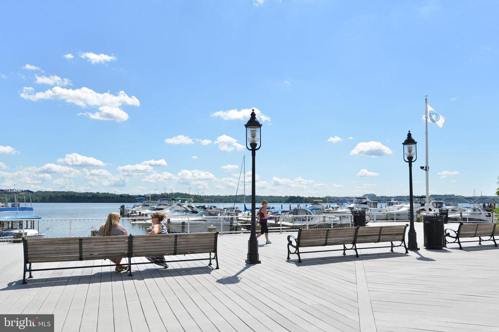 Enjoy the waterfront in Old Town - 214 WOLFE ST, ALEXANDRIA