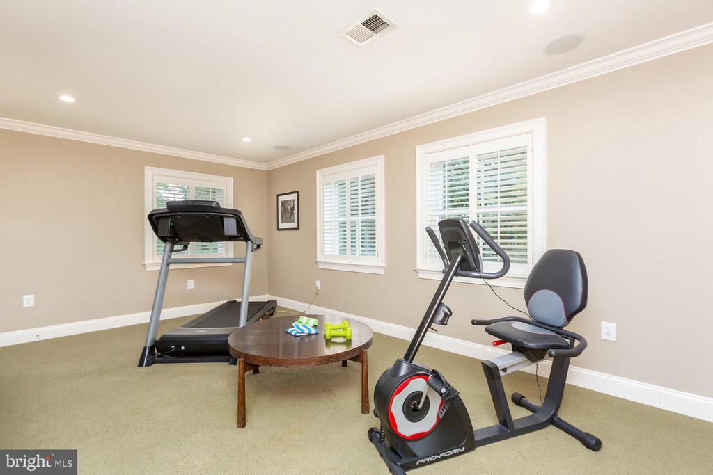 Gym or Family Room - 6014 GROVE DR, ALEXANDRIA