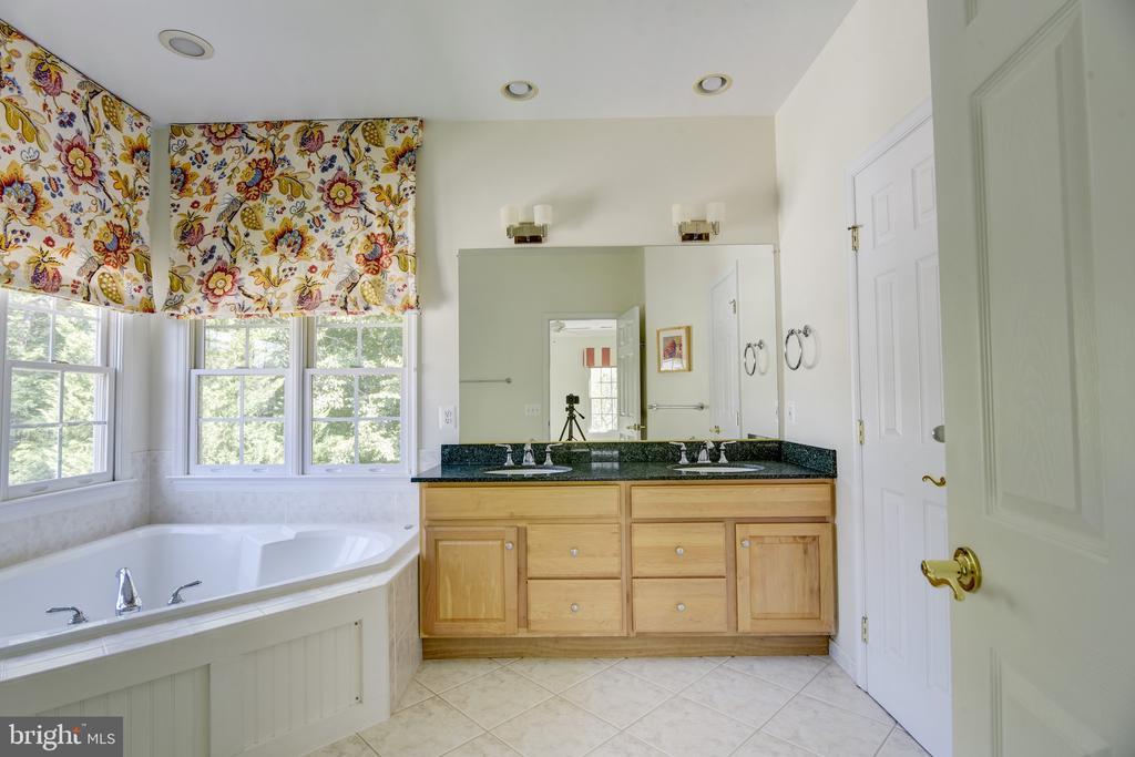 Upgraded master bath/granite counters & garden tub - 7428 SPRING SUMMIT RD, SPRINGFIELD