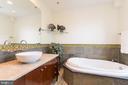 Master bath soaking tub - 1313 CORCORAN ST NW, WASHINGTON