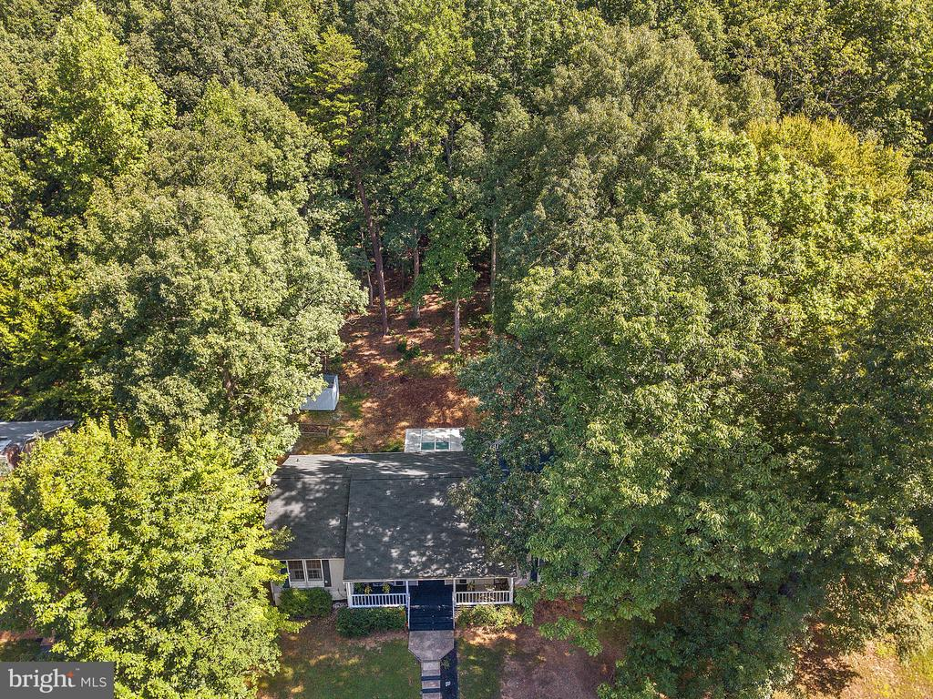 Surrounded by trees - 2136 HARPOON DR, STAFFORD