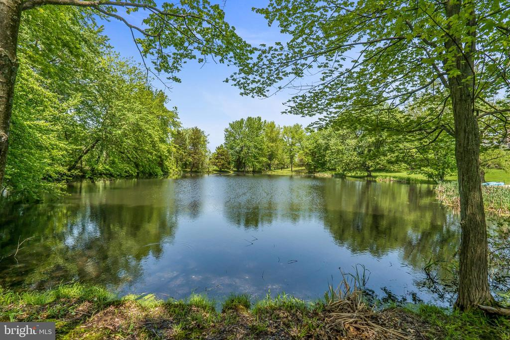 Large Pond View from Main House - 13452 HARPERS FERRY RD, HILLSBORO