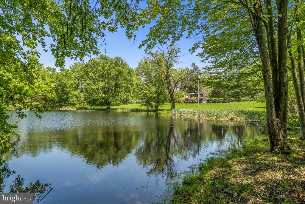Large Pond on Property - 13452 HARPERS FERRY RD, HILLSBORO