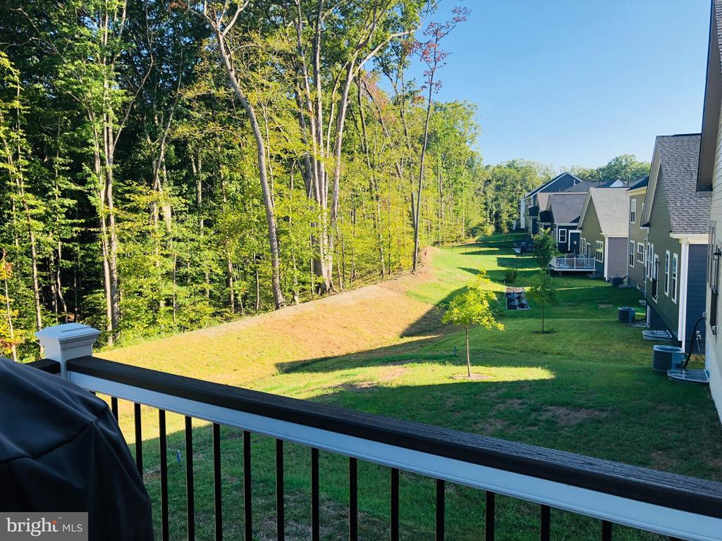 Nice views.. - 17985 WOODS VIEW DR, DUMFRIES