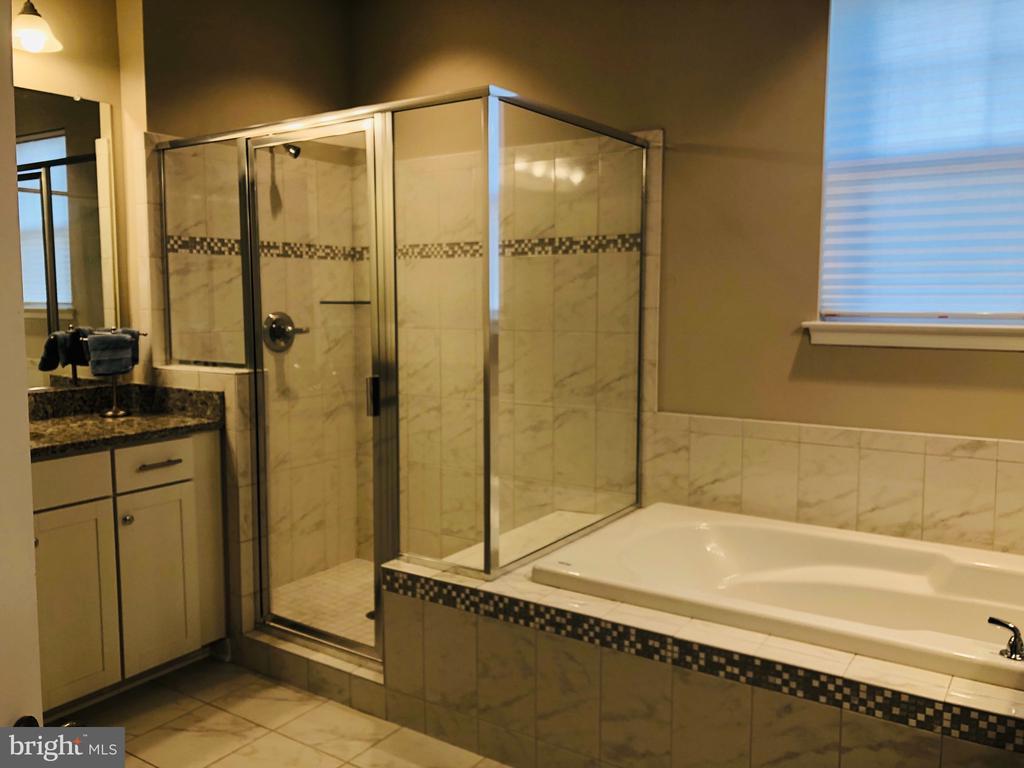 Luxury Master Bath Dual Vanities & Closets - 17985 WOODS VIEW DR, DUMFRIES